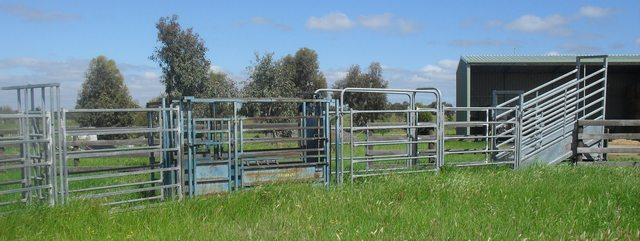 Yard Design For Highland Cattle